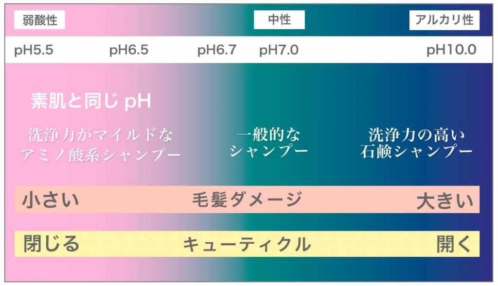 石鹸シャンプー ph比較図解