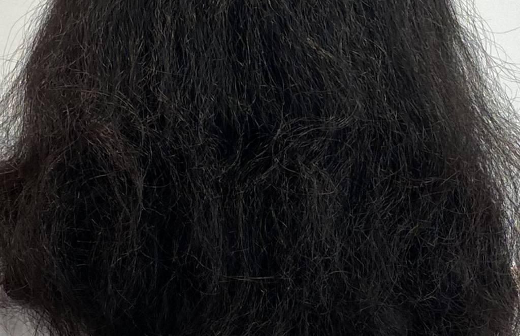 くせ毛でチリチリヘアになってしまった実例